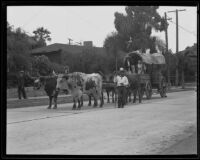 Covered cart pulled by 2 oxen in the Old Spanish Days Fiesta parade, Santa Barbara, 1935