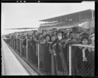 Spectators watch a horse race at Santa Anita Park, Arcadia, 1936