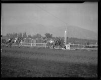 """Great Lover,"" ""Ima Count,"" ""Euryalis"" and ""Sundad"" finishing a race at Santa Anita Park, Arcadia, 1936"