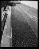 Grandstand view of a horse race at Santa Anita Park, Arcadia, 1936