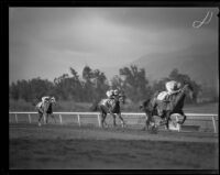 Horses racing at Santa Anita Park the year it opened, Arcadia, 1934