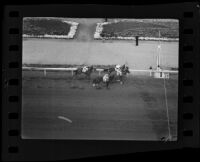 Horses approaching the finish line at Santa Anita Park on Christmas Day, Arcadia, 1935