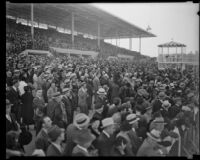 Spectators in the grandstand at Santa Anita Park on Christmas, the first day it opened, Arcadia, 1934