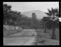 Road on the property of La Vina Sanatorium, Altadena, probably 1911-1935
