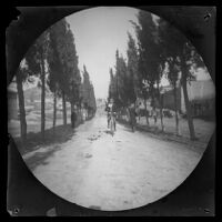 William Sachtleben riding a bicycle on the road leading to the Greek Cemetery, Athens, 1891