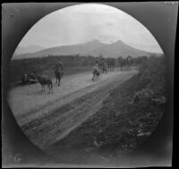 William Sachtleben walking his bicycle on the road from Beypasari to Ankara, Turkey, 1891