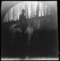 Seewald, friend of William Sachtleben, on a white horse in front of the Restaurant-Hotel Revillon, Tashkent, Uzbekistan, 1891