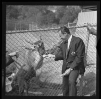 William Holden at the Childrens' Zoo, Los Angeles, 1967