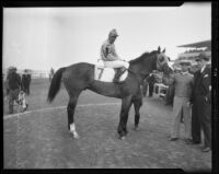 "Jockey Tommy Luther and winning race horse ""Time Supply"" at the Santa Anita Race Track, 1936"