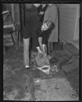 Murder suspect Fred Stettler reaches into a burlap bag, Los Angeles, 1936