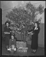 Helen Gattman, Mrs. Frank W. Egan, and Shirle Hilf, members of the Philanthropy and Civics Club Juniors pose next to a tree, 1935
