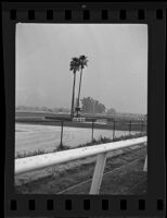 View of the infield at Santa Anita race track, Arcadia, ca, 1934