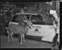 Warden C. L. Savage and Chiefie the deer, Los Angeles, 1936