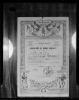 Arnold Arnot's Certificat De Bonne Conduite, Los Angeles, 1936