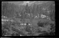 Meadow near the camp of H. H. West and friends on a trip to Gardner Creek, about 1919