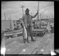 H. H. West standing on Newport Pier and holding a large sea bass, Newport Beach, 1914
