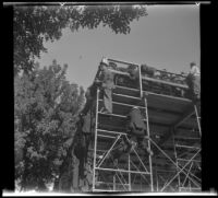 Ground view looking up at people scaling the scaffolding of a grand stand, Pasadena, 1941