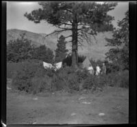 Mertie West and Agnes and Forrest Whitaker stand in a campsite, Inyo County vicinity, about 1930