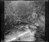 H. H. West Jr. fishing in Pine Creek, Inyo County vicinity, about 1930
