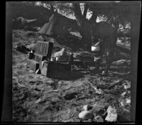 Cleo Swain fixing up a meal, Los Padres National Forest vicinity, about 1917