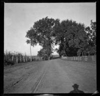 Road leading to White Bridge, Red Oak, 1900