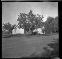 House with trees surrounding it, Red Oak, 1900