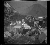 Mertie West, Agnes Whitaker, Josie Shaw and Forrest Whitaker taking a meal beneath their camp canopy, Mono County, 1941