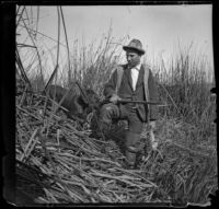 Guy M. West holding a duck while standing in the tules with his dog, Long Beach vicinity, about 1895
