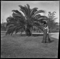 Ellen Lorene (Pinkie) Lemberger stands in front of a large palm tree in Lincoln (Eastlake) Park, Los Angeles, 1901