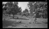 Mertie West approaches her parents' graves in Forest Lawn Cemetery on Decoration Day, Glendale, 1943