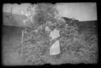 Mertie West picking raspberries in the Kinsell's backyard, Anchorage, 1946