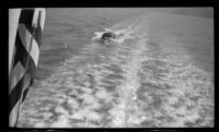 Boat following the Wests' ferry in its wake, Santa Catalina Island vicinity, 1948