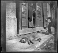 View of a dog sleeping on the sidewalk of a commercial street, Bursa (perhaps), Turkey, 1895