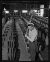 Garland Smith working at the Italian Vineyard Company, Guasti, 1936