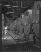 Gallons of wine at the Italian Vineyard Company, Guasti, 1936