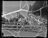 Dancing horse at the Los Angeles County Fair, Pomona, 1936