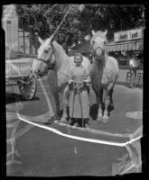 Lilly Moore with Percherons Turk and Diamond, Pomona, 1936