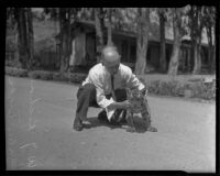 W. J. Richards with a tiger cub at the California Zoological Gardens, Los Angeles, 1936