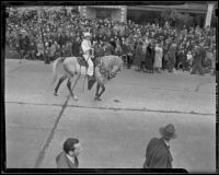Man on horseback at the Tournament of Roses Parade, Pasadena, 1939