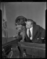 Ernest Osborne and his dog King on the witness stand, Los Angeles, 1939