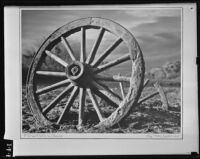 Photograph of a wheel on exhibit at the Los Angeles Museum, Los Angeles, 1939