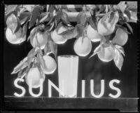 "Photograph for ""Sunjius"" showing a glass of orange juice"