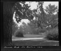 Alameda Park with path through lawn and trees, Santa Barbara, 1912
