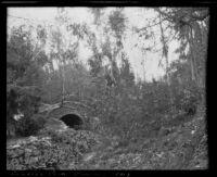 Stream in Ganesha Park, Pomona, 1913