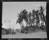Wooden buildings and palms on an unpaved street, Mazatlán, 1914
