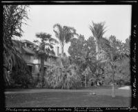Clinton B. Hale residence, with several palm tree varieties, Santa Barbara, 1912