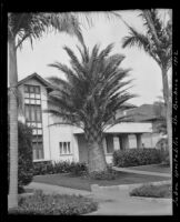 Palm tree on a residential street, Santa Barbara, 1912