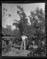 Horticulturist Francis Heiny stands in front of his Zizyphus jujuba tree, Brawley, 1912