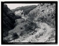 Valle de San Fernando (3)